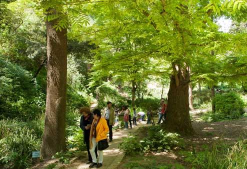 2017-03-05_visita_jardi_botanic_historic_interior