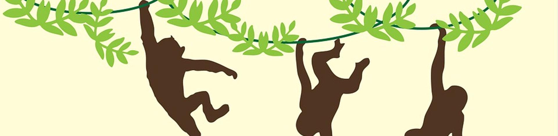 L'arbre dels micos. Un munt de mones i les seves històries
