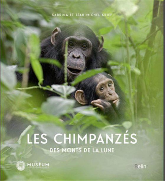 """Portada del llibre """"KriePortada del llibre: """"Les chimpanzés des monts de la lune"""", amb un xinpanzé a la selva"""