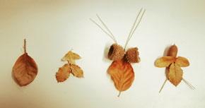 NiuViu: Insectari imaginat